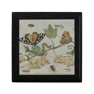 Insects & Fruits Small Square Gift Box