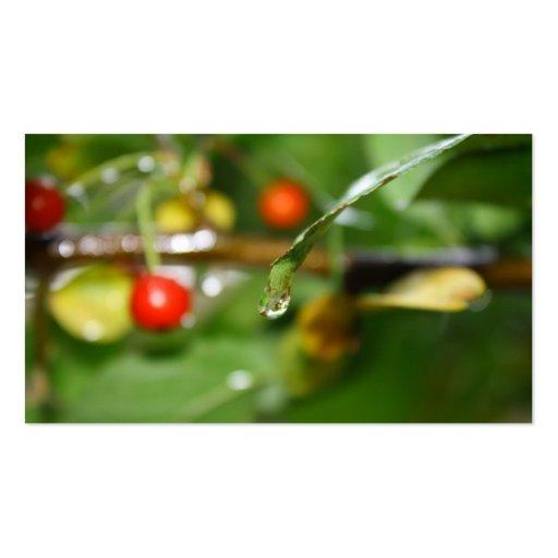 Inside a Rain Drop Business Card Template