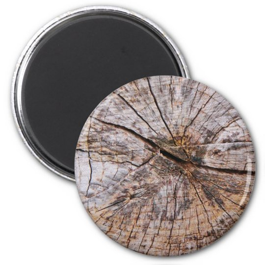 Inside a Tree Trunk 6 Cm Round Magnet