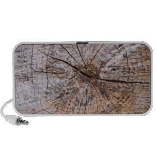 Inside a Tree Trunk Portable Speakers