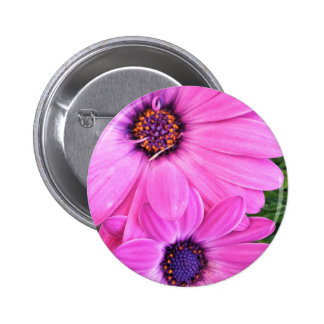 Inside of Pink Purple Gerbera Daisy Flower Nature 6 Cm Round Badge