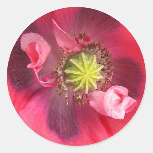 Inside the Poppy Round Sticker