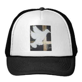 Inspirational Dove John 3:16 Hats