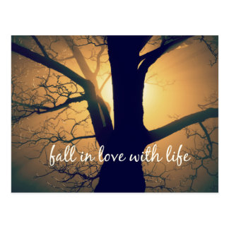 Inspirational Fall in Love with Life Quote Postcard
