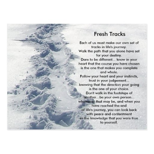 Inspirational Gifts Fresh Tracks Post Card