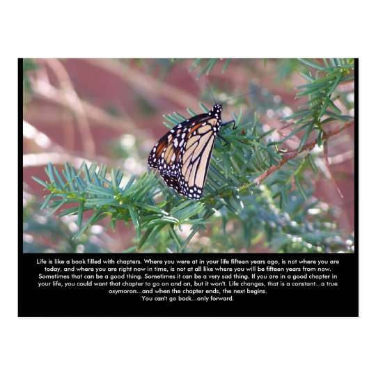 Inspirational Gifts Life Changes Postcard