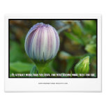 "Inspirational Insights Photo Print 10""x 8"""