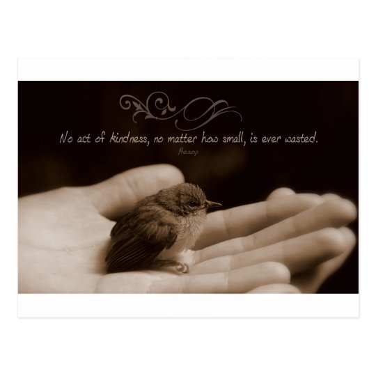 Inspirational Kindness Quote by Aesop Postcard