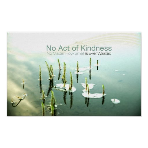 Inspirational Kindness Quote by Aesop Poster