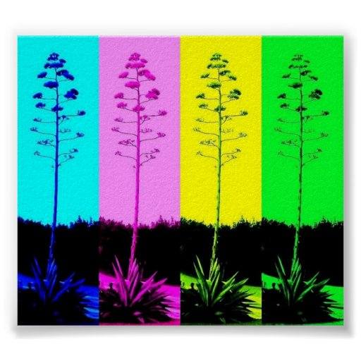 Inspired Muli-Coloured Blooms Poster