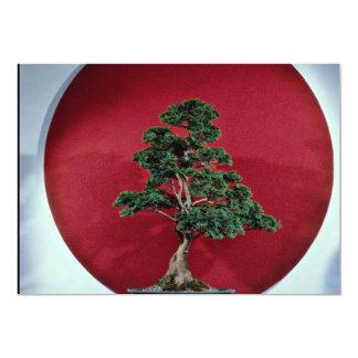 Inspiring Bonsai tree 13 Cm X 18 Cm Invitation Card