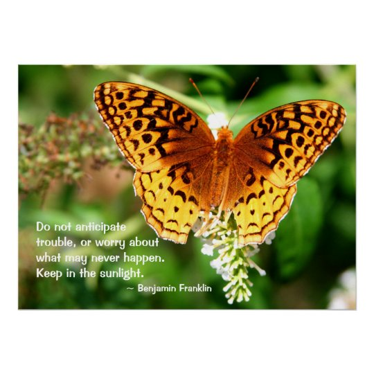 Inspiring Quote Keep in Sunlight Orange Butterfly Poster