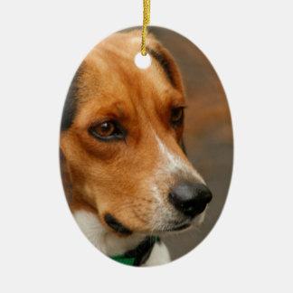Intelligent Focussed Beagle Hunting Dog Ceramic Oval Decoration