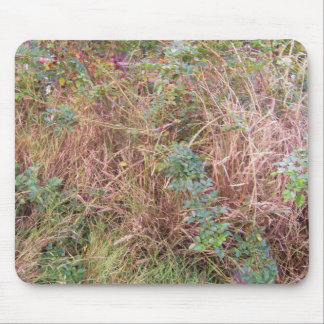 interesting plant mouse pad
