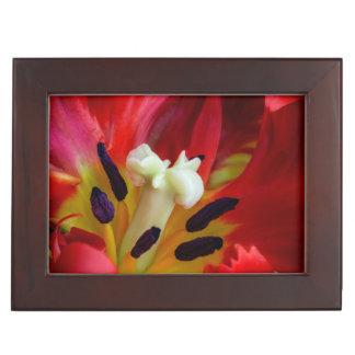 Interior of parrot tulip flower keepsake box