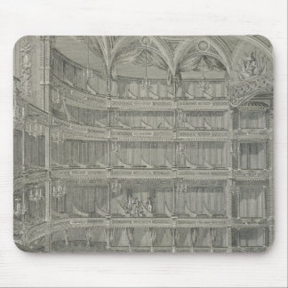 Interior of the Late Theatre Royal, Drury Lane, in Mouse Mat
