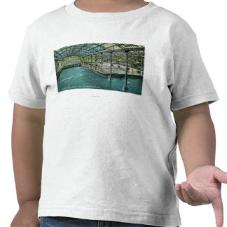 Interior View of the Indoor Sutro Baths Shirts