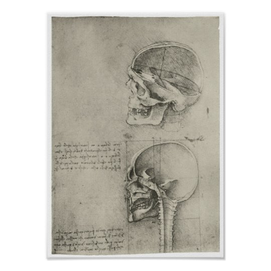 Interior View of the Skull, Leonardo da Vinci