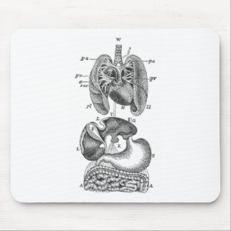 Internal Organs Mouse Pad