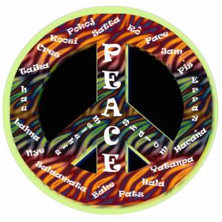 International Peace Sign Pin Photo Sculpture Badge