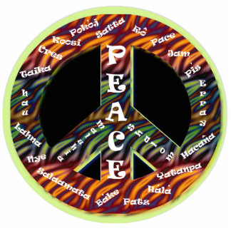 International Peace Sign Pin Photo Sculpture Badge