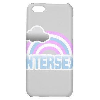INTERSEX RAINBOW iPhone 5C CASES