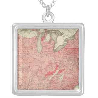 Intestinal Diseases Deaths in the US Silver Plated Necklace