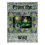 Into the Woods Post Card