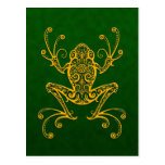 Intricate Golden Green Tree Frog