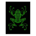 Intricate Green Tree Frog on Black