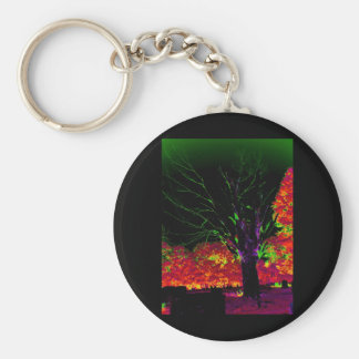 INTRIGUE 7 BASIC ROUND BUTTON KEY RING