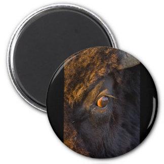 Intruder 6 Cm Round Magnet