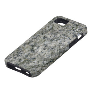 Invincible - Vibe iPhone 5 Case
