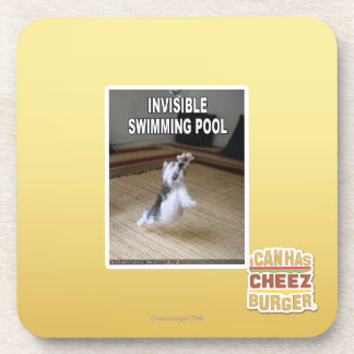 Invisible Swimming Pool Coaster