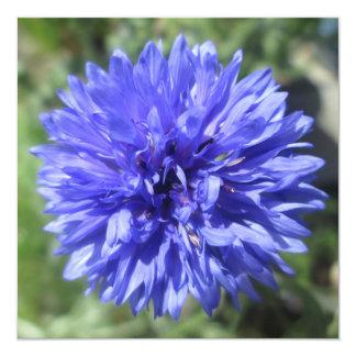 Invitation - Cornflower Blue Bachelor's Button
