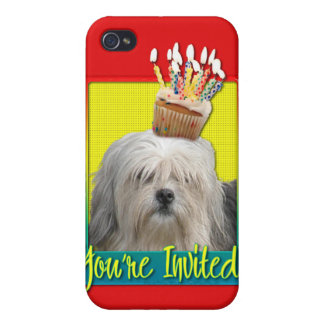 Invitation Cupcake - Lowchen iPhone 4/4S Cases
