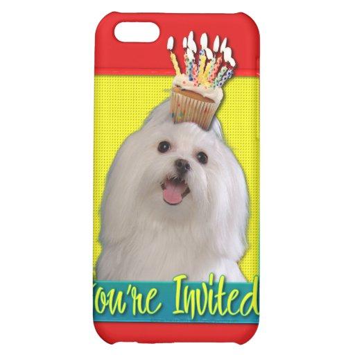 Invitation Cupcake - Maltese iPhone 5C Cases