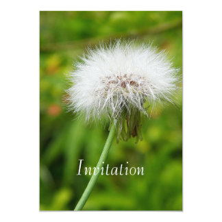 Invitation Dandelion