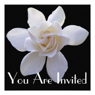 Invitation - Gardenia on Black