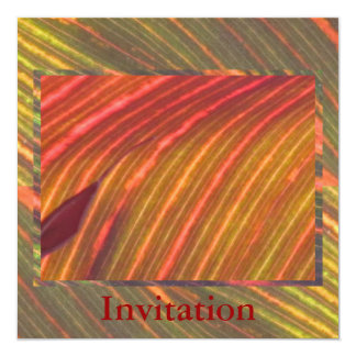 Invitation - Shades of Orange-Green