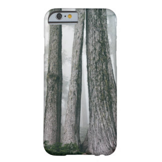 Invoking the Forest Barely There iPhone 6 Case