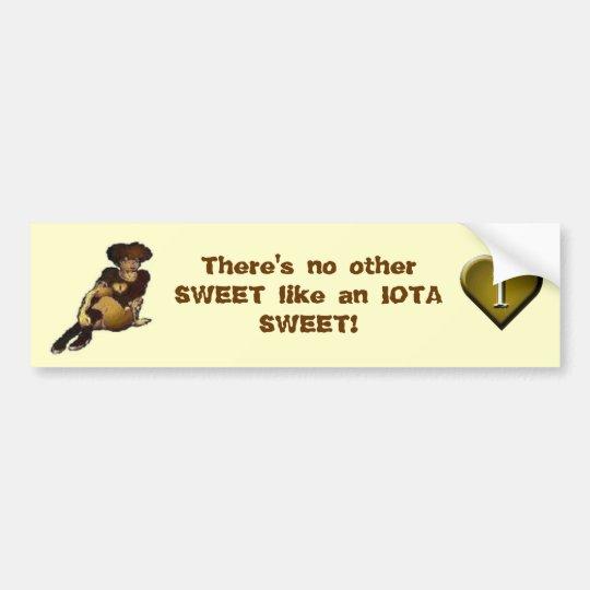 IOTA SWEET Bumper Sticker