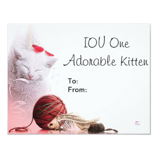 IOU One Adorable Kitten 11 Cm X 14 Cm Invitation Card