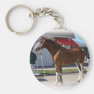 Iowa Clyde Show Missy ]white border Key Ring