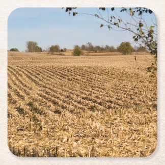 Iowa Cornfield Panorama Photo Square Paper Coaster