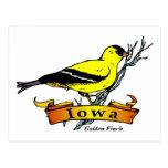 Iowa Goldfinch Postcards
