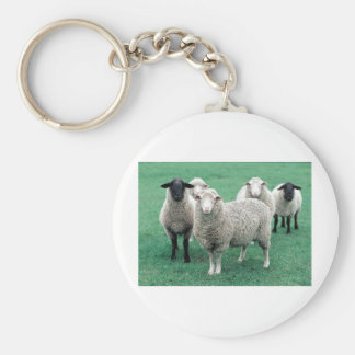 Iowa Sheep Basic Round Button Key Ring