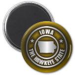 """""""Iowa Steel"""" Magnets (G)"""