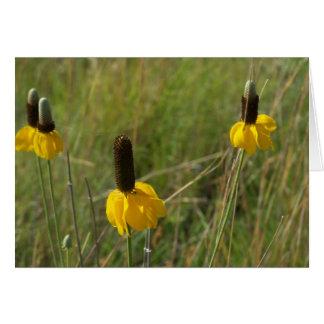 Iowa Wildflowers Card