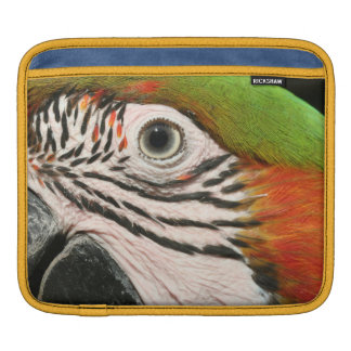 ipad case sleeve Harlequin macaw parrot bird eye